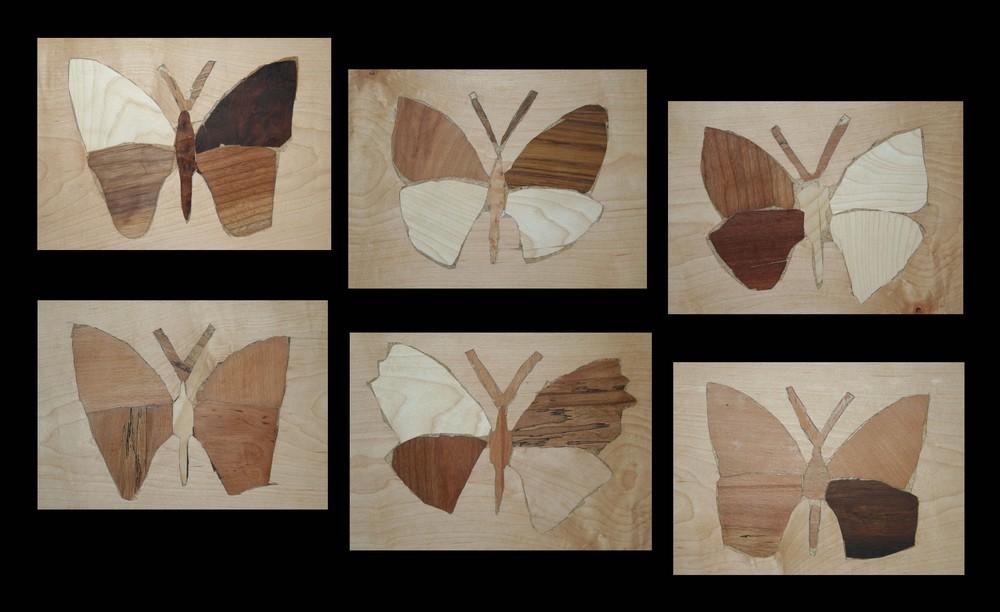 > sechs Schmetterlinge