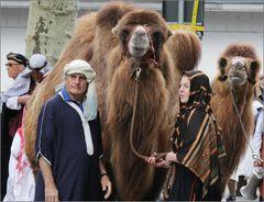 Sechseläuten: stolze Kamele