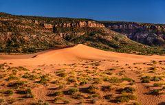 Second Dune 4, Coral Pink Sand Dunes SP, Utah, USA