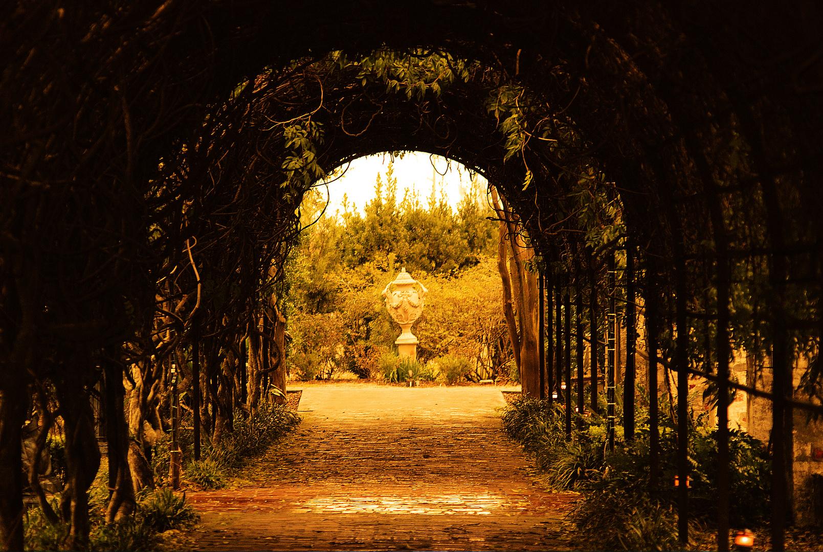 """ Secret Garden """