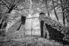~ Secret Garden ~