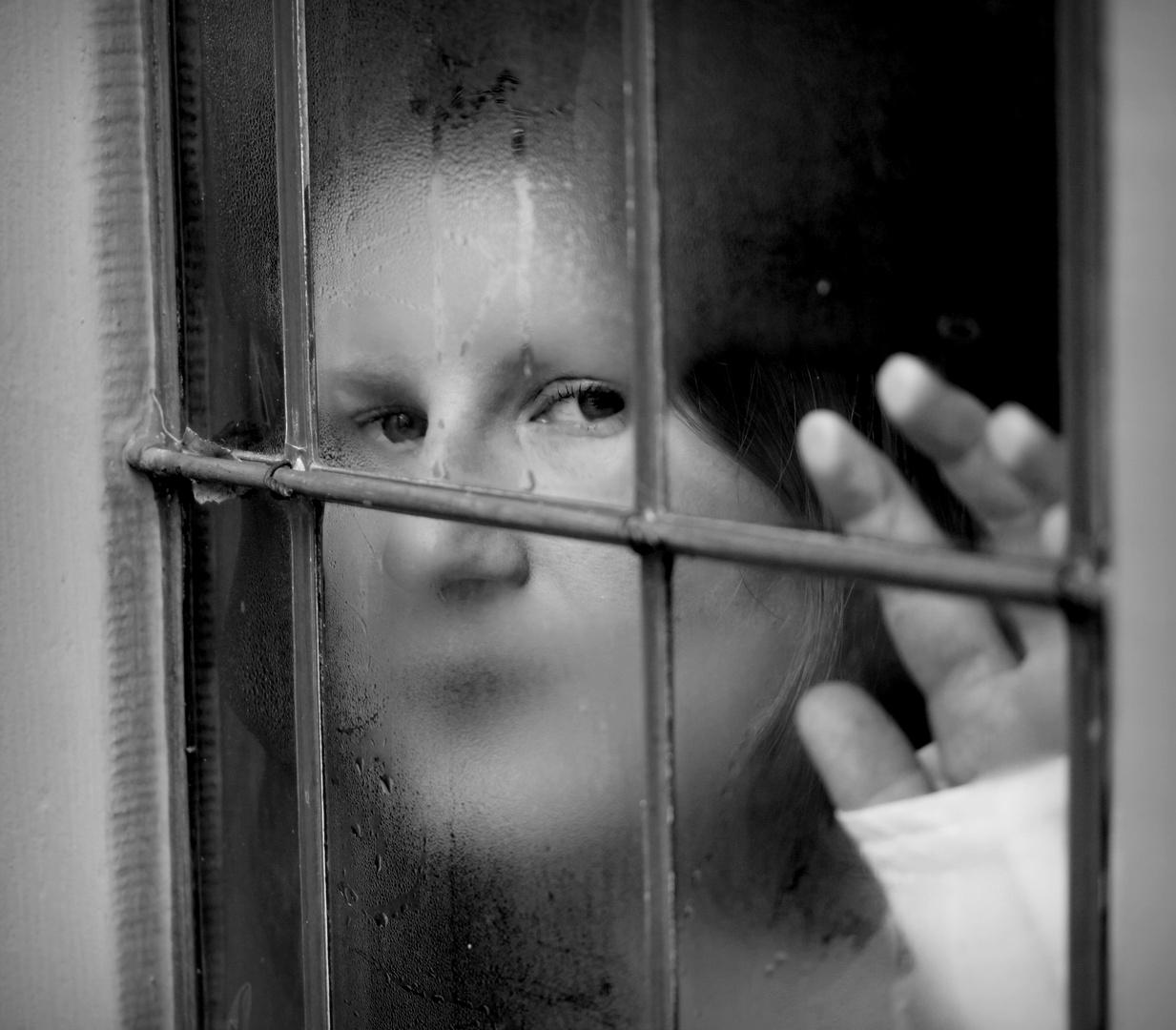 secret window (2)