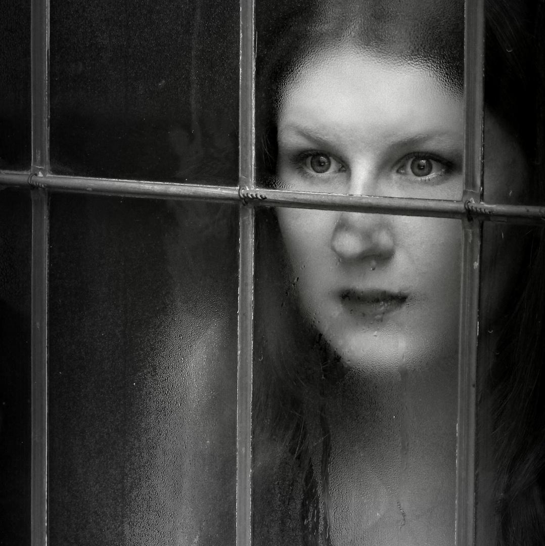 secret window (4)