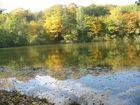 See auf Kockelscheuer