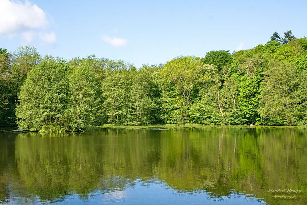 See im Schloßpark von Ballenstedt (1)