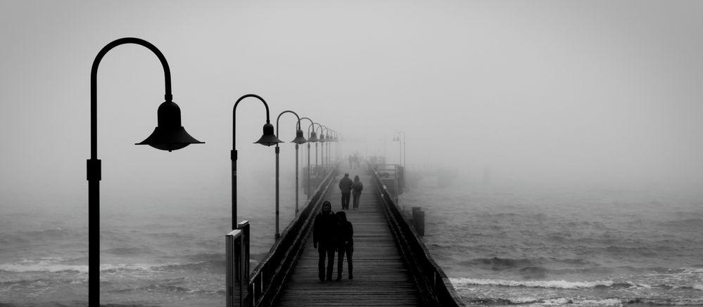 ~ See ~ Nebel ~