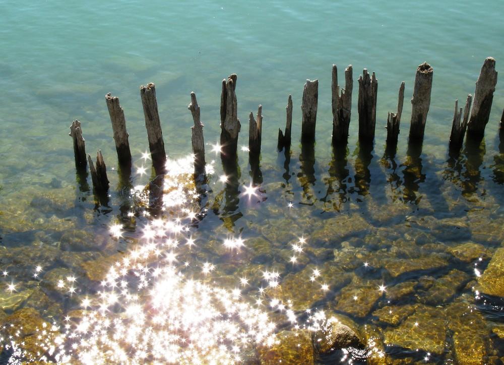 See-Sternchen