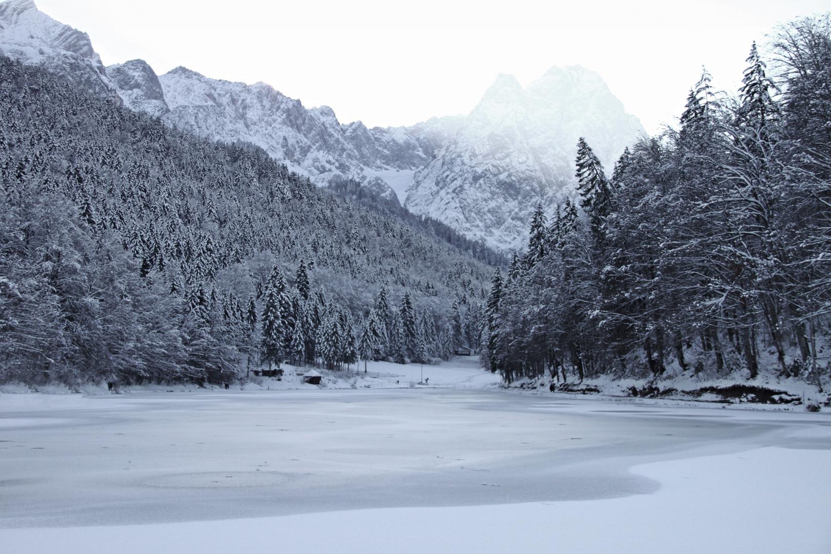 See und Bäume im Winterkleid