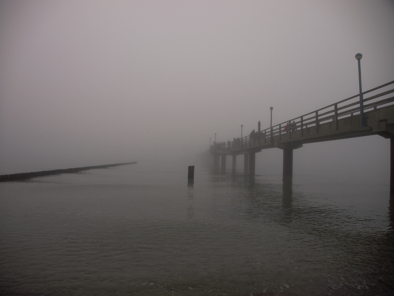 Seebrücke Zingst im Nebel