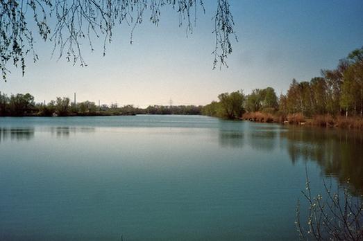 Seenlandschaft um Karlsruhe (Teil 9)