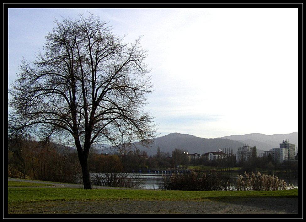 Seepark in Freiburg