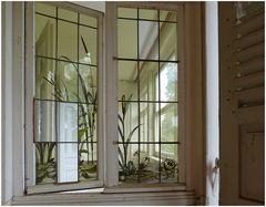 Seerosenfenster