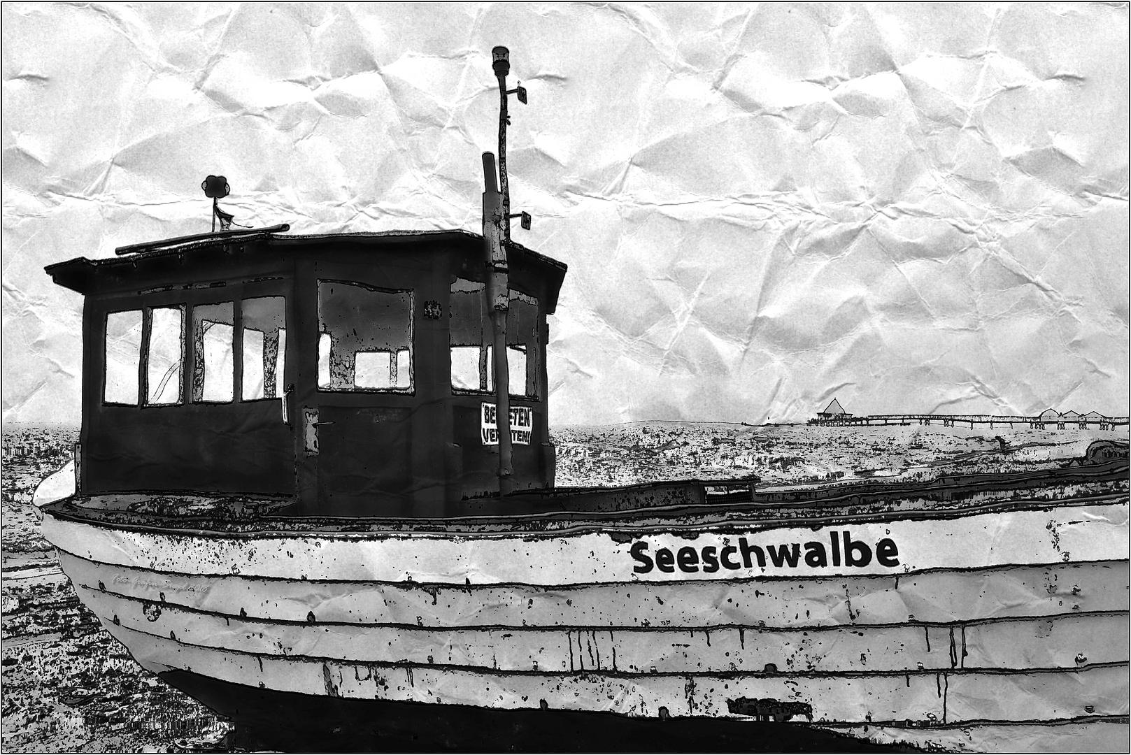 Seeschwalbe ...