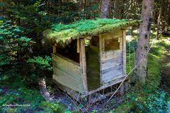 Seewald-Schernbach Kleine Hütte im Wald
