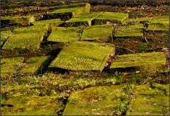 sefardische gräber