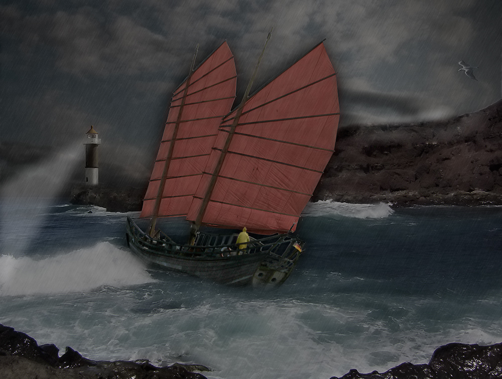 Segel im Sturm