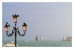 Segel vor Venedig