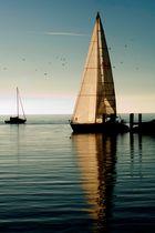 Segelboot im Hafen von Ouchy (CH)