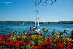 Segelfahrt zu Christi Himmelfahrt ab Überlingen Bodensee