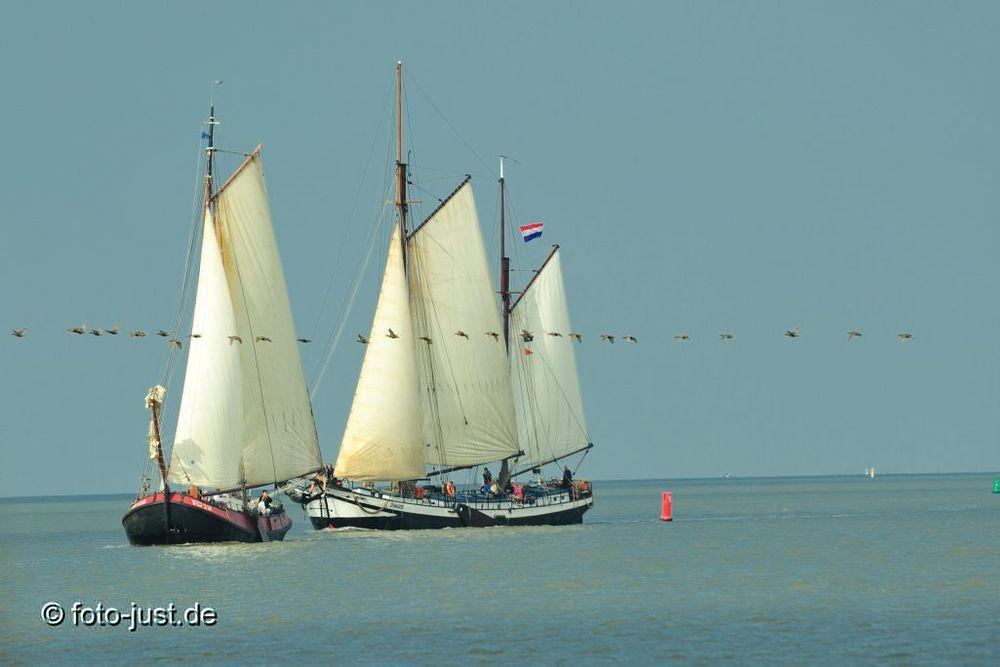 Segeln auf dem Wattenmeer