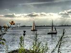 Segeltörn auf der Elbe