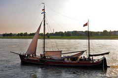 Segelvergnügen auf dem Rhein bei Düsseldorf