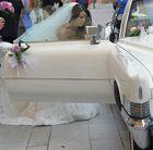 Seguimos de boda.