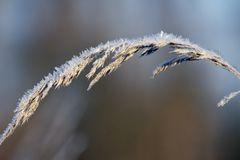 Sehnsucht nach Winter #02