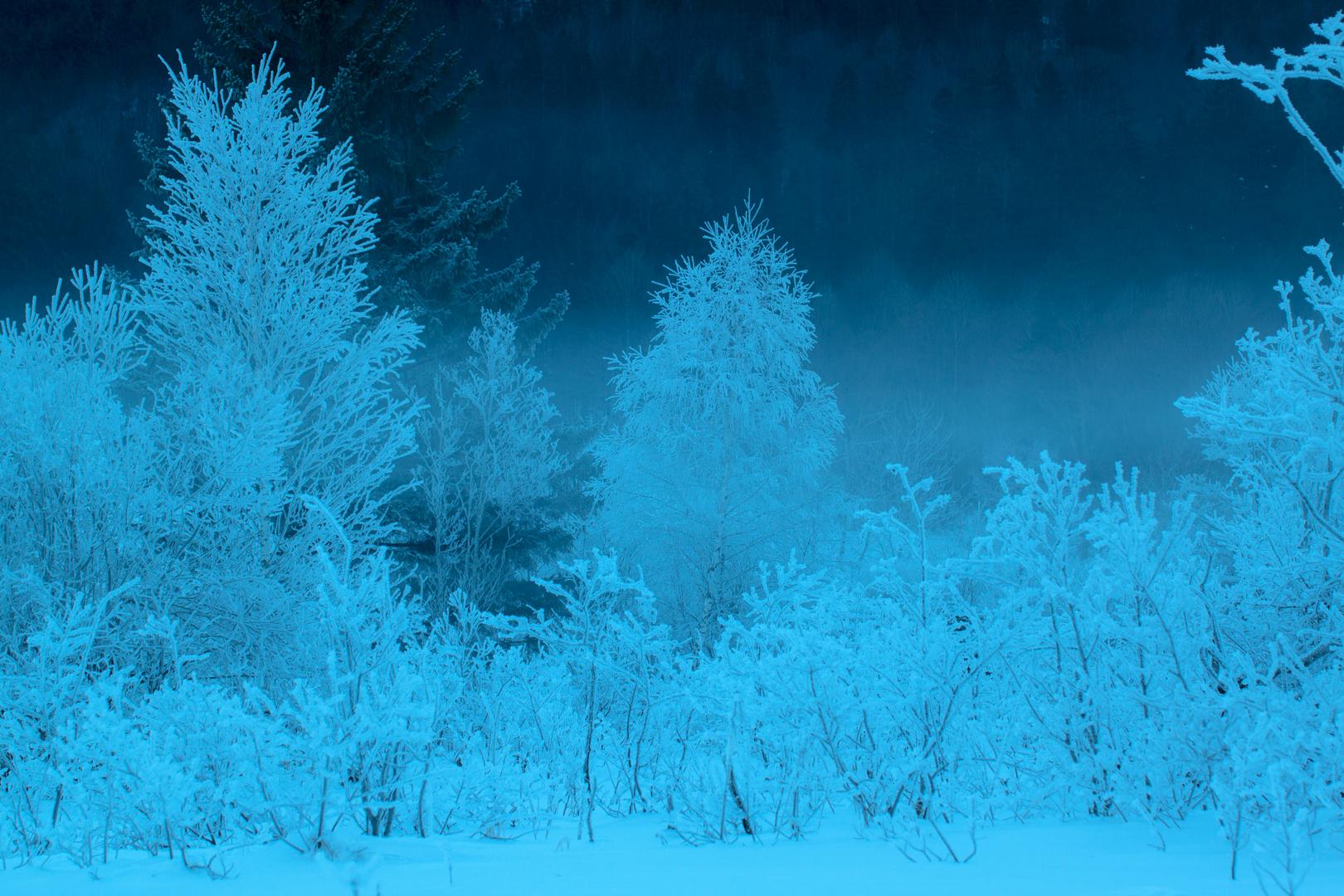 Sehr kalt ....