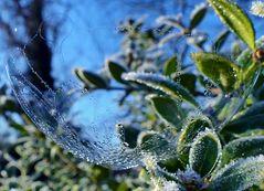 Seifenblase teilgefroren