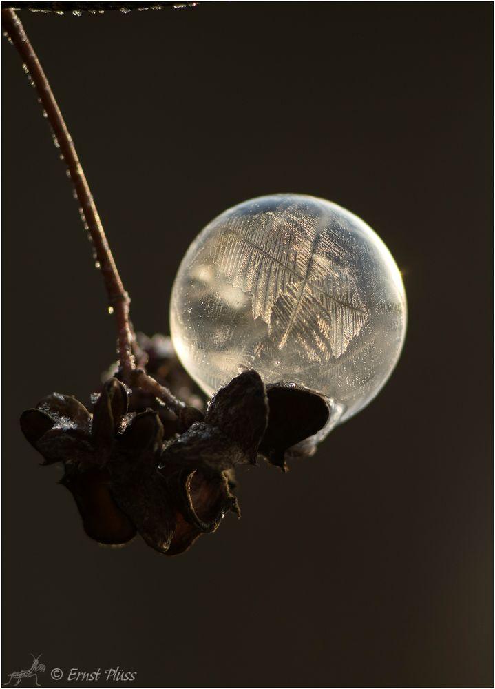 Seifenblasen - Jupiter 11