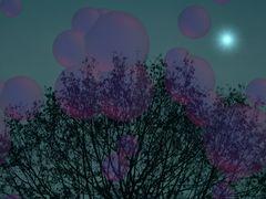 Seifenblasen mitten in der Nacht