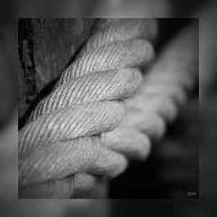 Seile