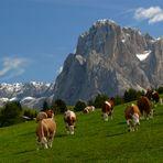Seiser Alm (Südtirol)