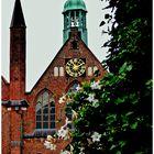 Seit dem Frühjahr grünt und blüht es auf dem Lübecker Koberg