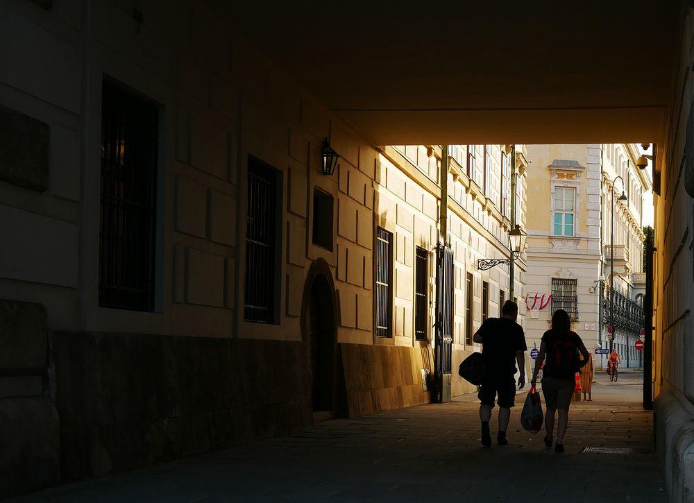 Seitendurchgang der Wiener Hofburg