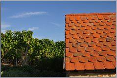 selbst ein Hausdach tankt Septembersonne....