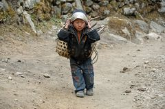 Selbst Kinder tragen im Khumbu schwere Lasten