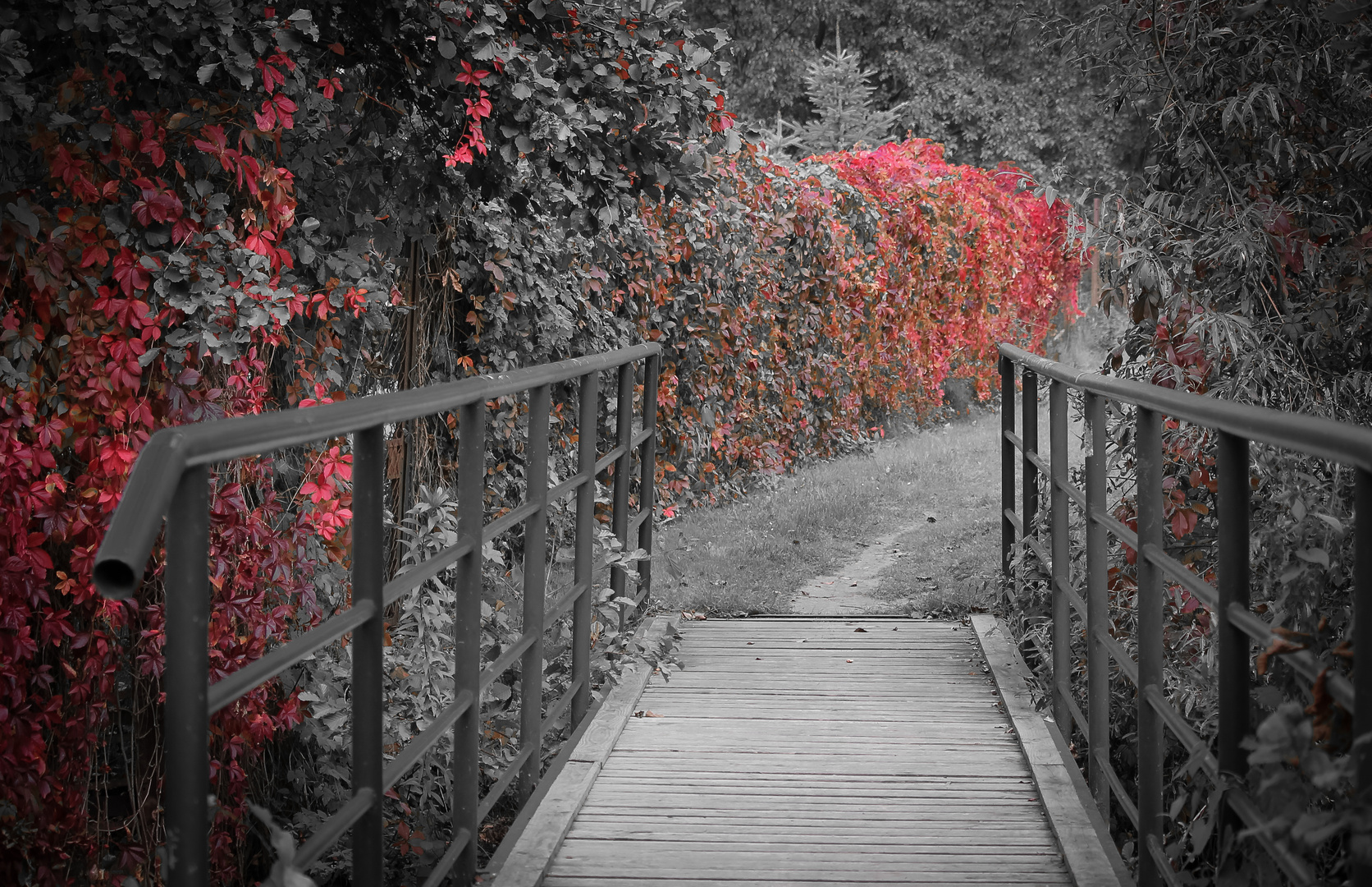 Selektiver Herbst
