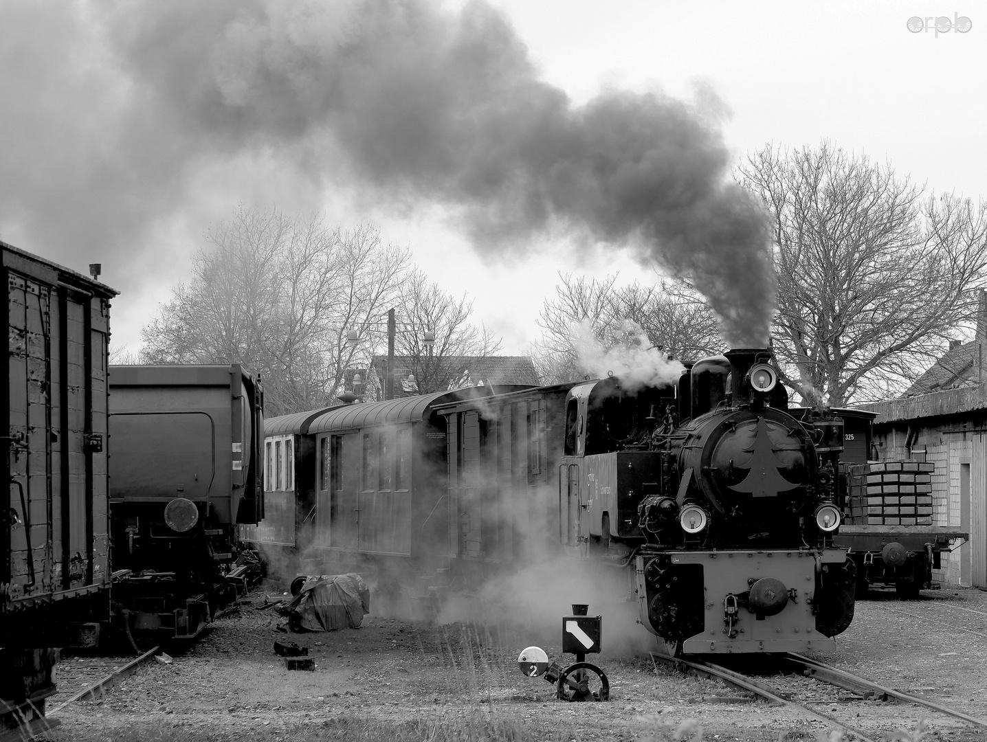 Selfkantbahn mit Dampflokomotive Schwarzach