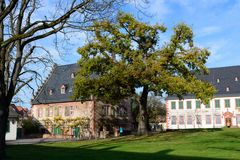 Seligenstadt Nov 2020 5