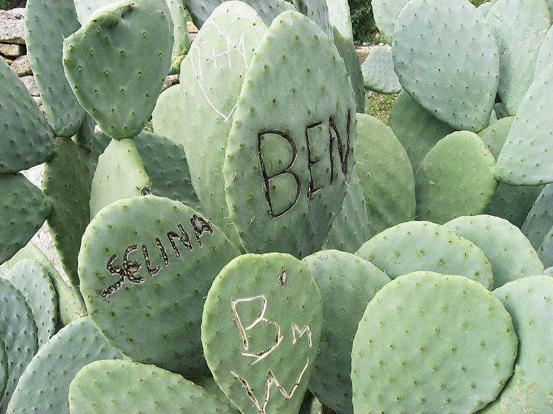 Selina und Ben