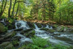 Selkefälle/Harz