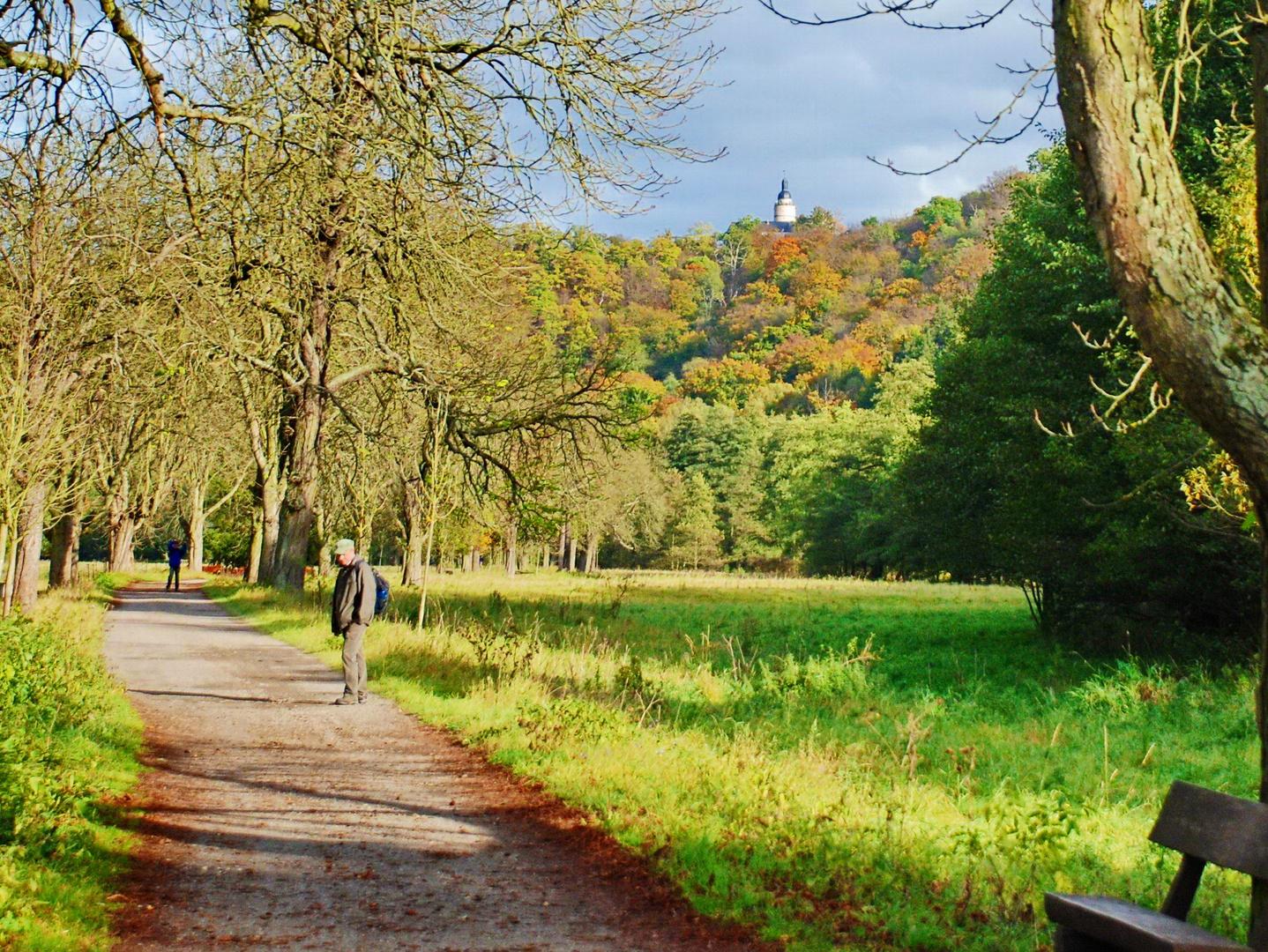Selketal mit Burg Falkenstein