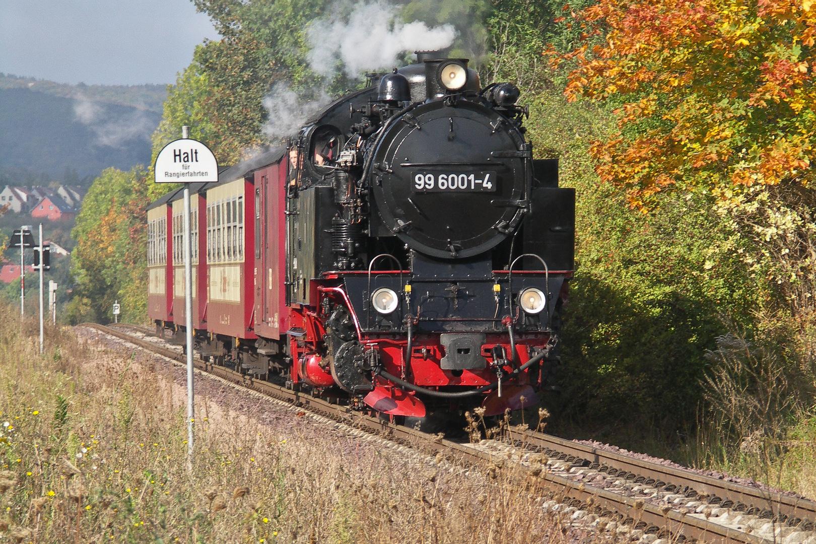 Selketalbahn001