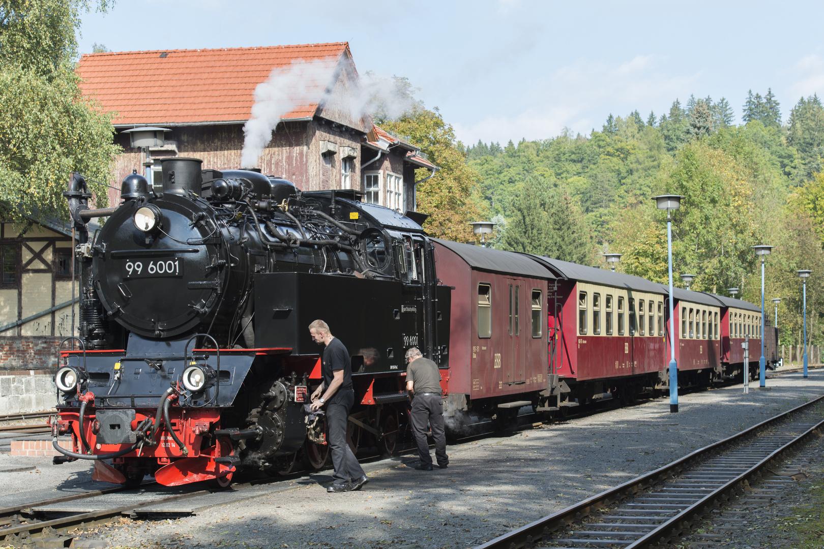 Selketalbahn003