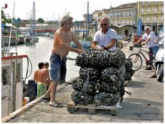 Seller of mussels