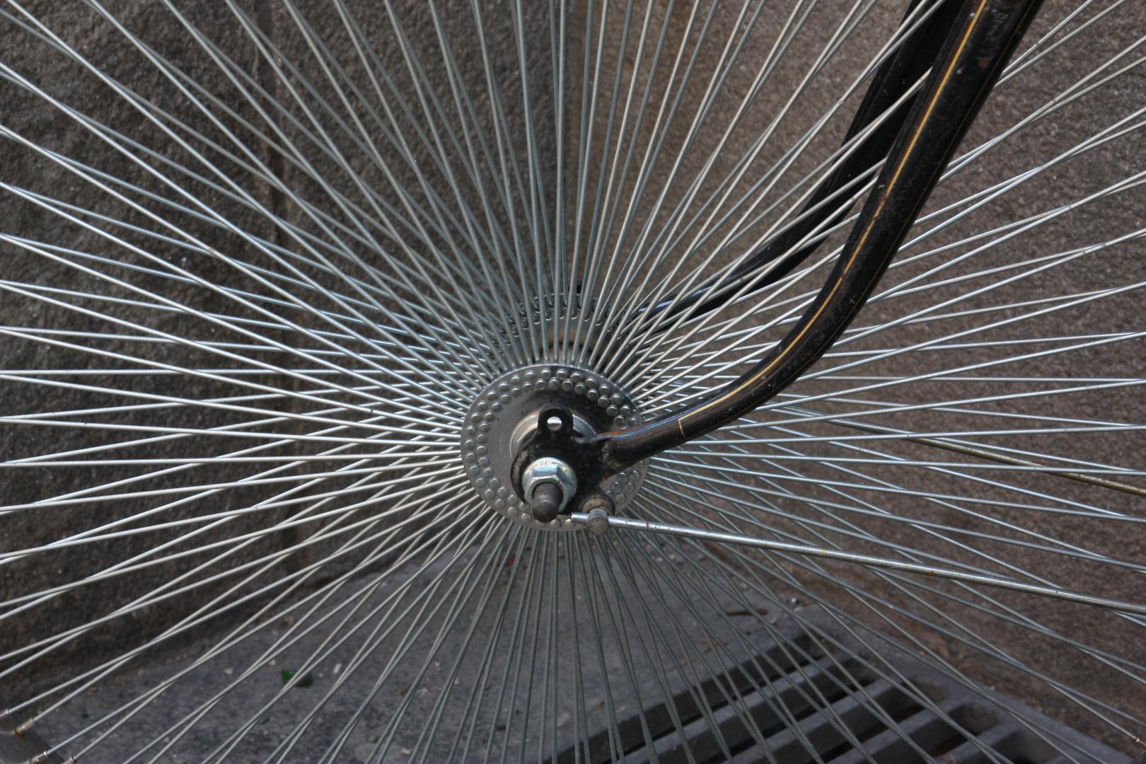Seltene Anzahl von Chromspeichen bei Fahrrad