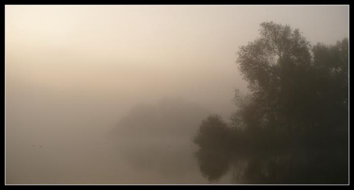 Seltsam,im Nebel zu wandern!...(Bilder zu Texten 14)