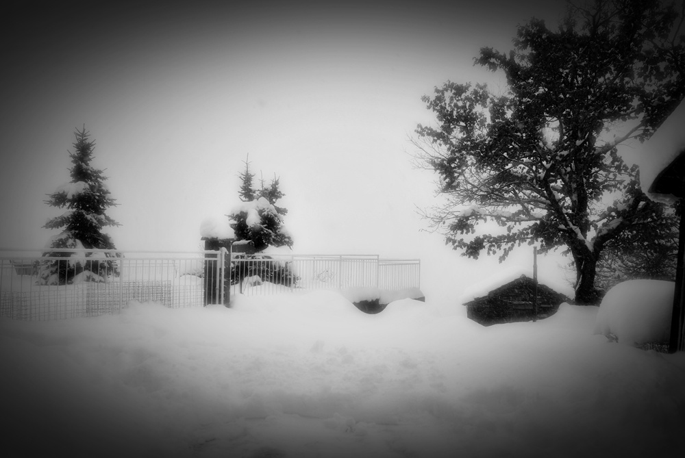 Semplicemente neve...